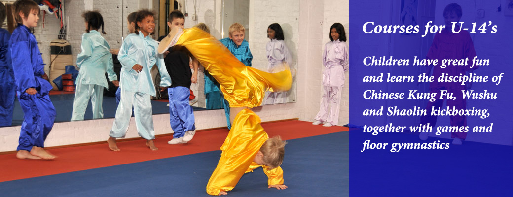 Kung Fu for Under 14's